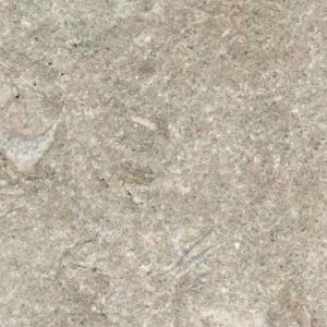 Fossil Green Fossiel