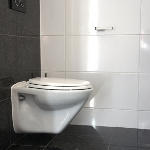 Graniet Silver Grey Gepolijst in toilet.