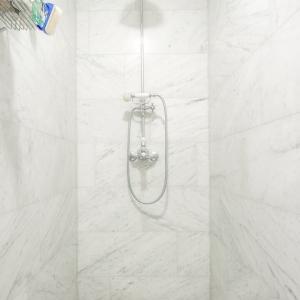 Bianco Carrara Gezoet in douche.