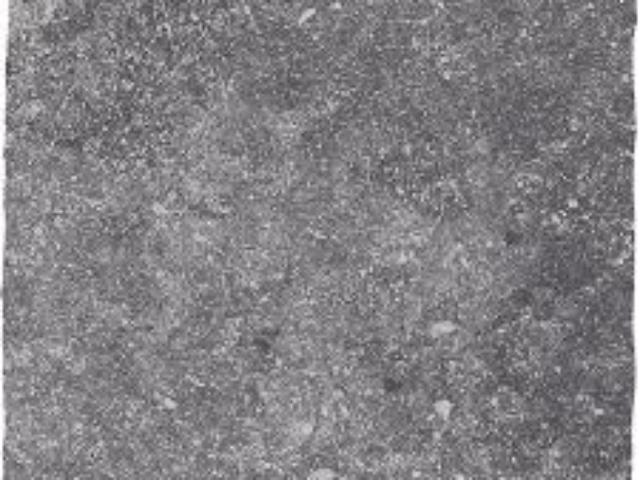 belgisch-hardsteen-look_getrommeld-licht_80x80cm_Dikte-2cm-1