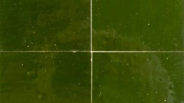 marokkaanse-zelliges-10x10-cm-vert-imperial
